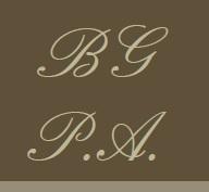 BGPA Logo2